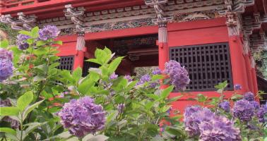 赤城寺イベント情報詳細のヘッダー